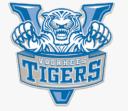 Voorhees Tigers logo